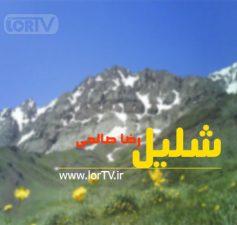 شلیل رضا صالحی