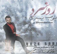 rooze-sard-ayoub saeidi