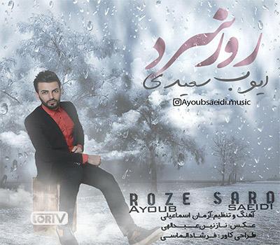 دانلود آهنگ لری روز سرد از ایوب سعیدی