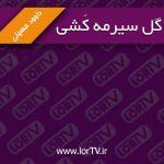gol-Sirma-Kashi Davod Hosseini