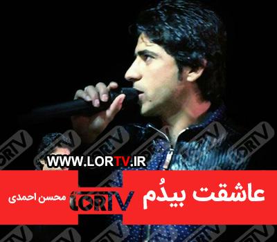 دانلود آهنگ عاشقت بیدُم از محسن احمدی