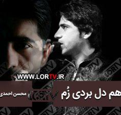 هم دل بردی زم محسن احمدی