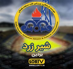 شیر زرد مسجد سلیمون