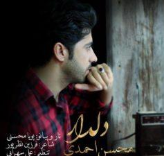 آهنگ عاشقانه لری بهمئی دلدار از محسن احمدی