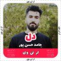 دل از حامد حسن پور